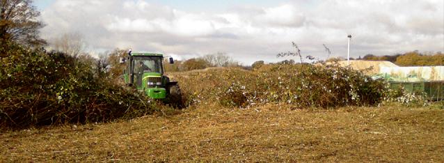 Habitat Scrubland Management