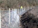 Badger Proof Fencing, Gilfach Quarry