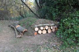 Habitat Mitigation – hibernacula