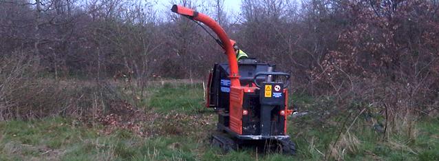 Habitat Woodland Management