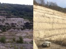 Vegetation Maintenance on a Geological Site of Special  Scientific Interest